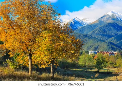 Pirin snow peaks mountains panorama with houses and colorful autumn trees, Bansko, Bulgaria