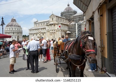 Pisa / Tuscany / Italy / May 2018 : 
