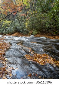 Pisgah Forest Stream