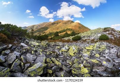 Pishkonia mountain range in September. Carpathians, Ukraine