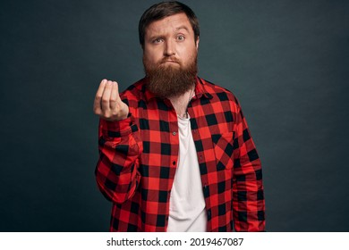 Pissed sexy guy with beard inred checkered shirt shaking fingers in italian gesture, where is my money or what do you want, frowning bothered, standing questioned and disappointed, grey background.