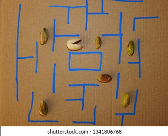 Pistachio variant of legendary game Pacman.