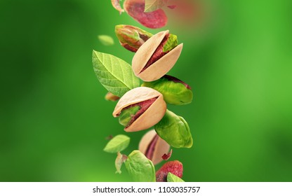 Pistachios and leaves falling from the air