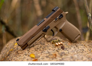 Pistol and ammunition in the autumn environment