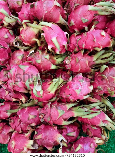 Pitaya Fruits Pithaya Fruit Several Cactus Stock Photo (Edit Now