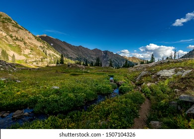 Pitkin Creek runs along side the Pitkin Trail in the high alpine flora of the Eagles Nest Wilderness as the Gore Range watches in a stony gaze