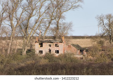 Pitsford, Northamptonshire / UK - January 16th 2018: Derelict brick-built farmhouse and outbuilding, the latter with a dovecote. Mature trees loom over the buildings and flying jackdaws.