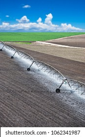 Pivotal irrigation system watering a planted field