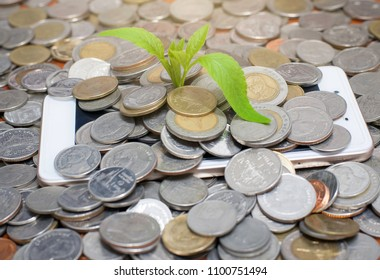 Place a coin on the mobile Have a tree