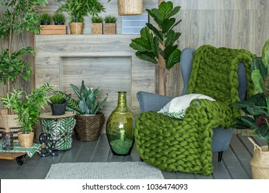 A place to relax with an armchair and many plants. Concept of living room, interior, home.