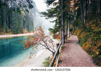 Place for tourists. Path with wooden fence in the mountain woods near the river.