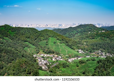 The place where the famous Longjing tea growth, with the city of Hangzhou on the horizon.