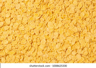 Placer of cornflakes on a white background. Cornflakes scattered on a table. Close up top view textures