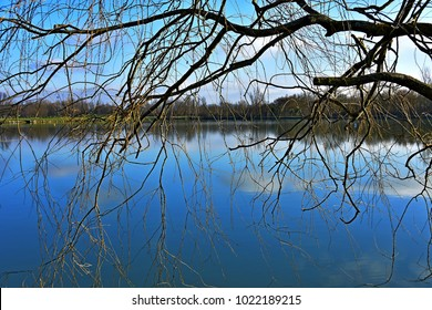 Placid lake seen through leafless branches