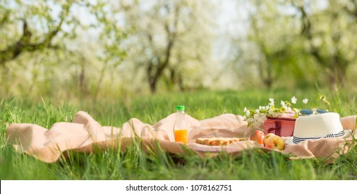 Plaid, juice with apples and a bag for a picnic, under a warm sun, in blossoming spring gardens. The concept of a picnic, summer and rest