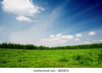 plain and blue sky