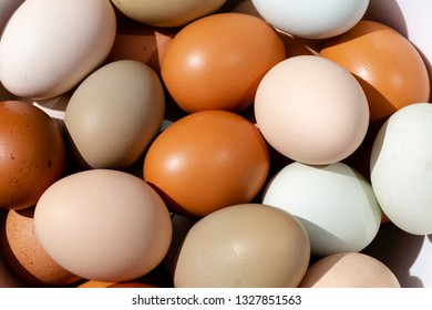 Plain multicoloured free range eggs in natural daylight full frame top view background. Close up composition