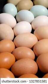 Plain multicoloured free range eggs in natural daylight full frame background. Close up composition