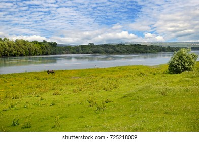 Plain river, meadow and floodplain forest on the shore