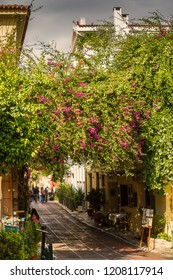 "Plaka is the old historical neighborhood of Athens, clustered around the northern and eastern slopes of the Acropolis,It is known as the ""Neighborhood of the Gods"""
