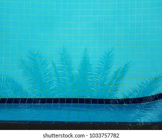 plam leaf shadow reflect on swimming pool