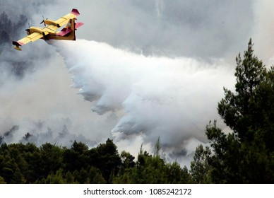 A plane drops water during a forest fire on Ouranoupoli, Greece on Aug. 9, 2012