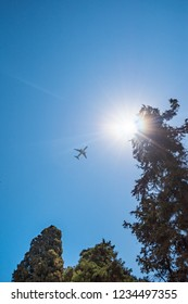 Plane flying on sky above tops of trees near Grand master palace (Rhodes, Greece)