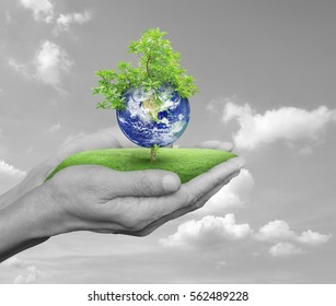 Planet and tree in human hands over black and white sky with white clouds, Save the earth concept, Elements of this image furnished by NASA