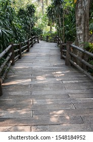 Plank brick path on the walking bridge along the garden with the light in the botanical garden.