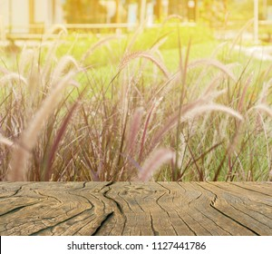 The plank is in the meadow with light orange. Old wooden balcony that protrudes forward with copy space. Abstract background and blur vission with sunlight effect processed