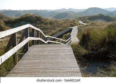 Plank road through the dunes, West coast of Amrum, Germany. Amrum is one of the North Frisian Islands on the German North Sea coast, south of Sylt and west of Foehr.