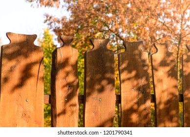 A planks fence, in the autumn warm sunshine.