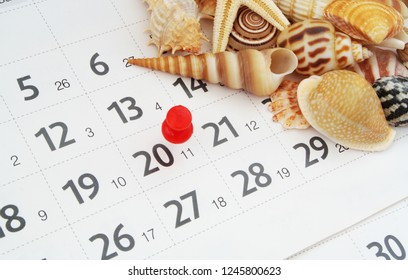 Planning vacation concept, tropical seashells on calendar page with red push pin
