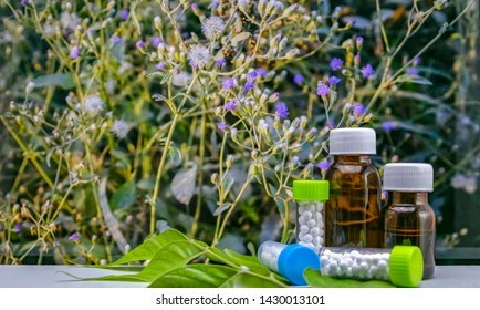 Plant based globule sugar ball homeopathic medicine and glass bottles on green leaf with wild flower background