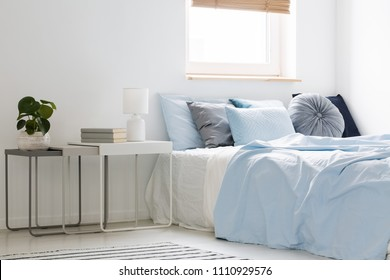 Plant, books and lamp standing on white and gray nightstands in bright and cozy bedroom interior with decorative pillows on bed with blue bedding. Real photo