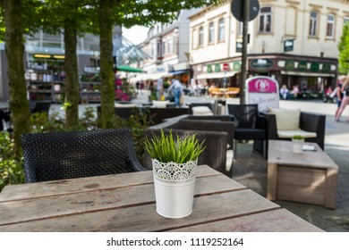Plant in cafe and view on the Marktrasse in Wilhelmshaven, Germany.