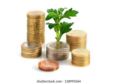 Plant and coins.