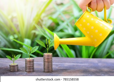 plant coins growth up to profit for concept investment mutual fund finance and business banking