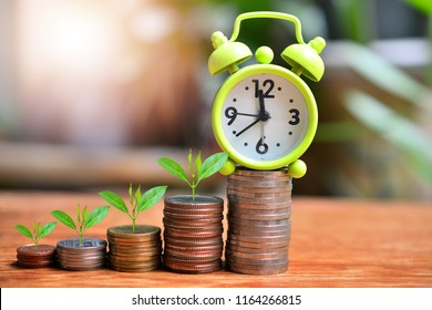 plant coins saving growth up increase to profit interest with time for concept investment mutual fund finance and pension retirement