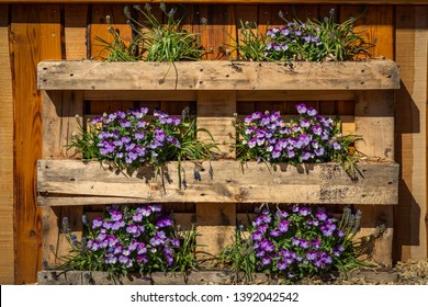 Plant decoration in a Palette
