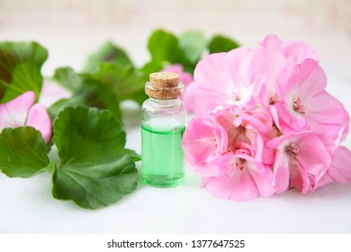 Plant extract in viles with geranium leaves and pink flowers