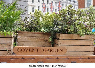 Plant filled display outside  London's famous old fruit and vegetable  Market, Covent Garden.