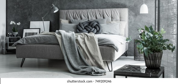 Plant in flowerpot on design table in bedroom with braided pillow on king size bed