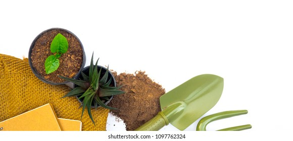 Plant gardening and agriculture tools on white background table  top down view