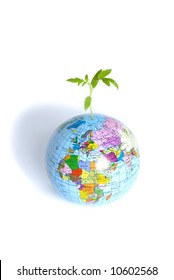 plant from a globe on a white backgroun