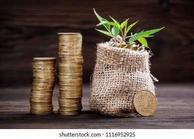 Plant growing in coins bag for money saving and investment on wood background