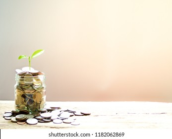 Plant growing from coins money in glass jar on wooden table with copy space, saving or investment concept
