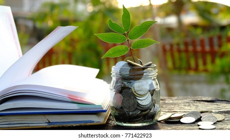 Plant Growing In jar with many coins and stack of books . Investment saving money ,Interest Concept,Education cost themes.