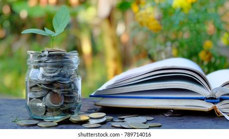 Plant Growing In jar with many coins and stack of books .