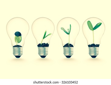 Plant growing in lightbulb , nature technology ecology ideas growth beginning concept object design
